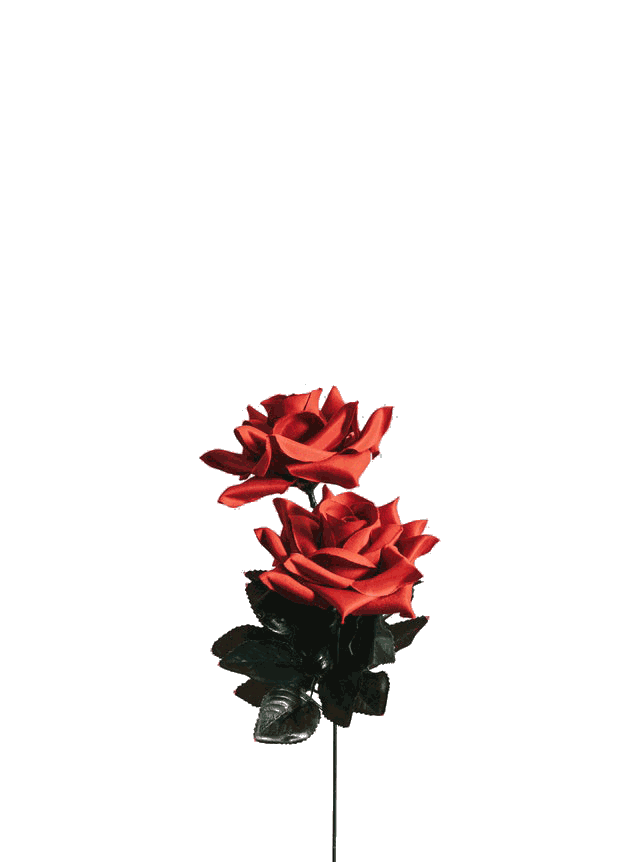 In this example, we extract roses from the image. This is done by deleting the iron-gray color (#d7d8da) and its close tones from the image.